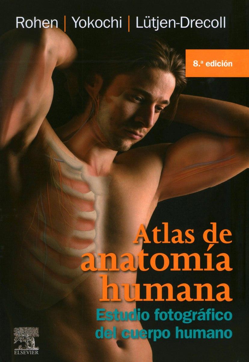 Lujoso Atlas De Anatomía Humana Netter 5ª Edición Pdf Modelo ...