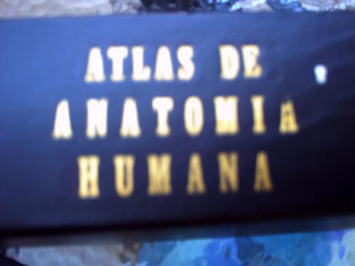 atlas de anatomia humana  de frank h netter, 4ta edicion