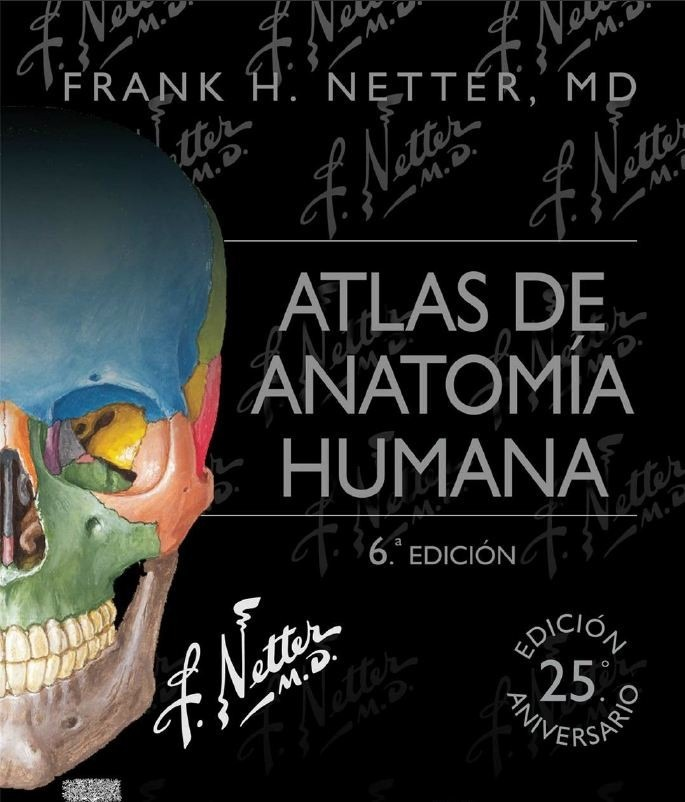 Contemporáneo Anatomía Ortopédica Rederos Friso - Anatomía de Las ...