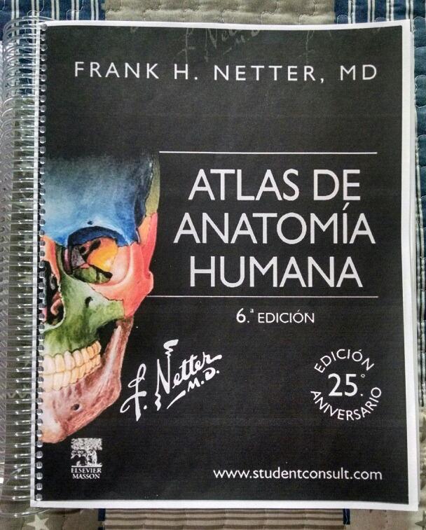 Perfecto Anatomía Hizo Descarga Gratuita Ridículamente Simple ...