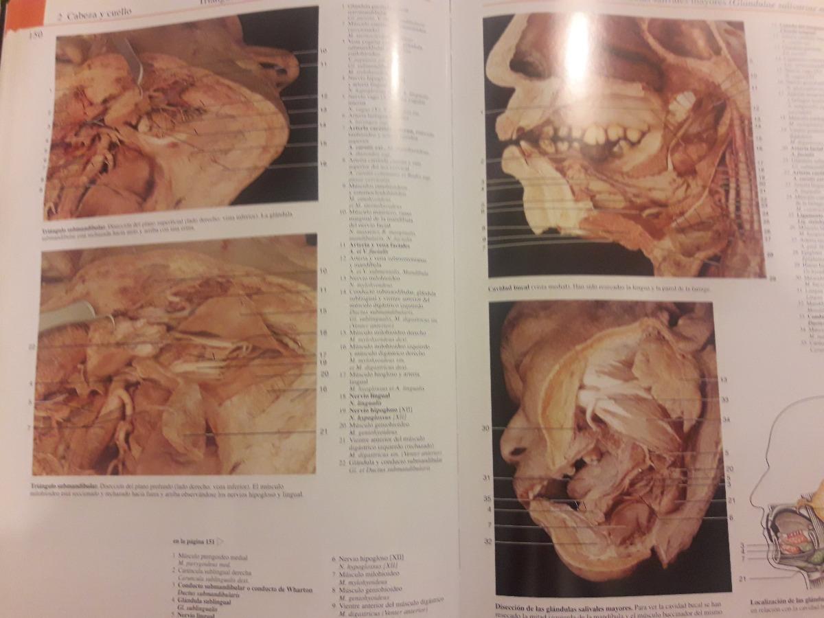 Hermosa Catherine Breillat La Anatomía Del Infierno Friso - Imágenes ...