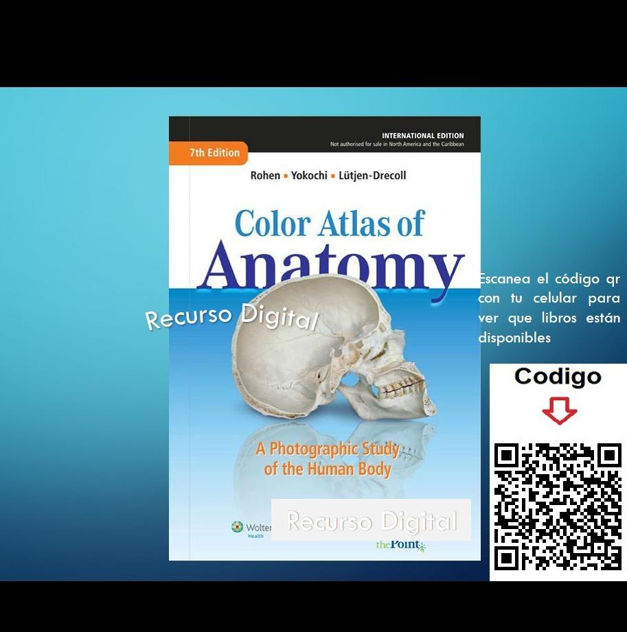 Atlas De Anatomía Humana - Rohen- 7ma - Edición - Ingles - $ 45.00 ...