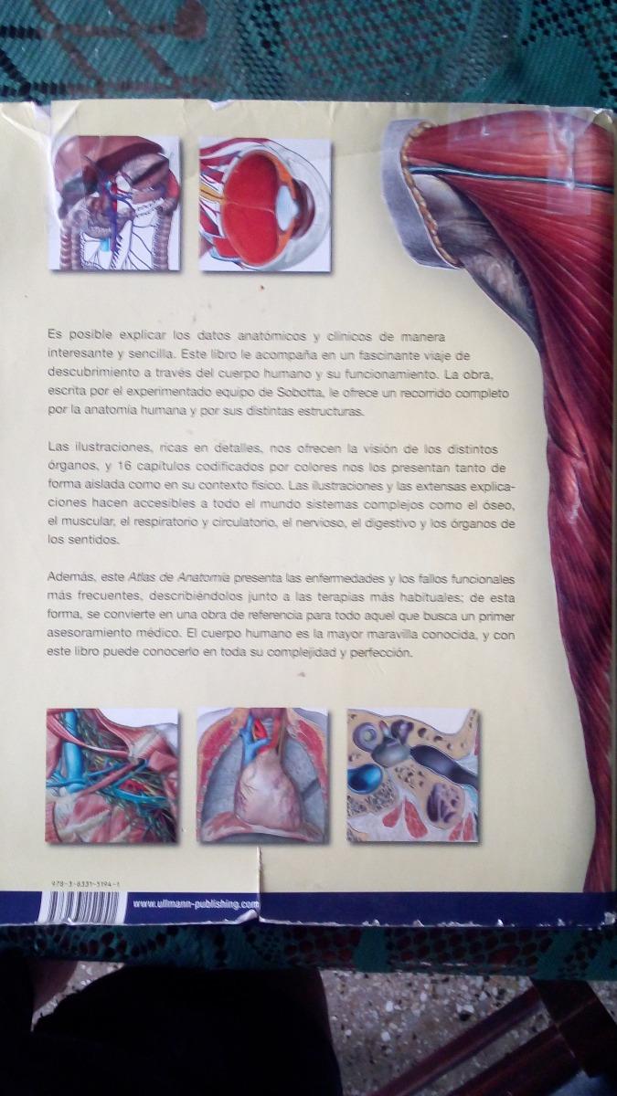 Fantástico Datos Interesantes Anatomía Viñeta - Imágenes de Anatomía ...