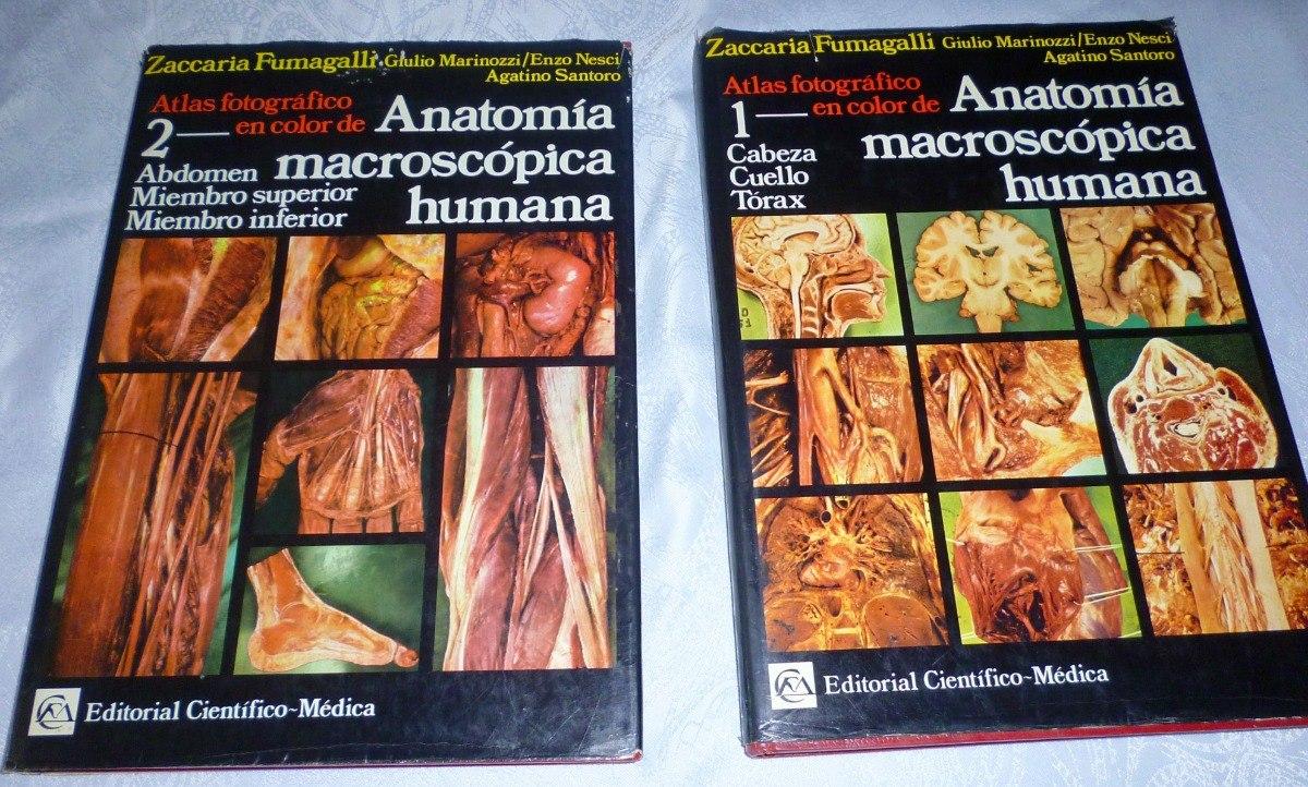 Atlas De Anatomía Macroscópica Humana Zaccaria Fumagalli - Bs. 4.000 ...