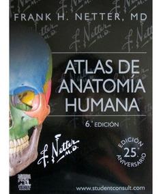Atlas De Anatomia De Netter Descargar Gratis Ebook Download