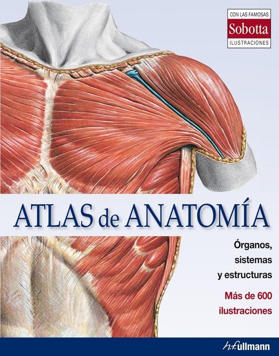 Atlas De Anatomía Órganos, Sistemas Y Estructuras - Taschen - $ 865 ...