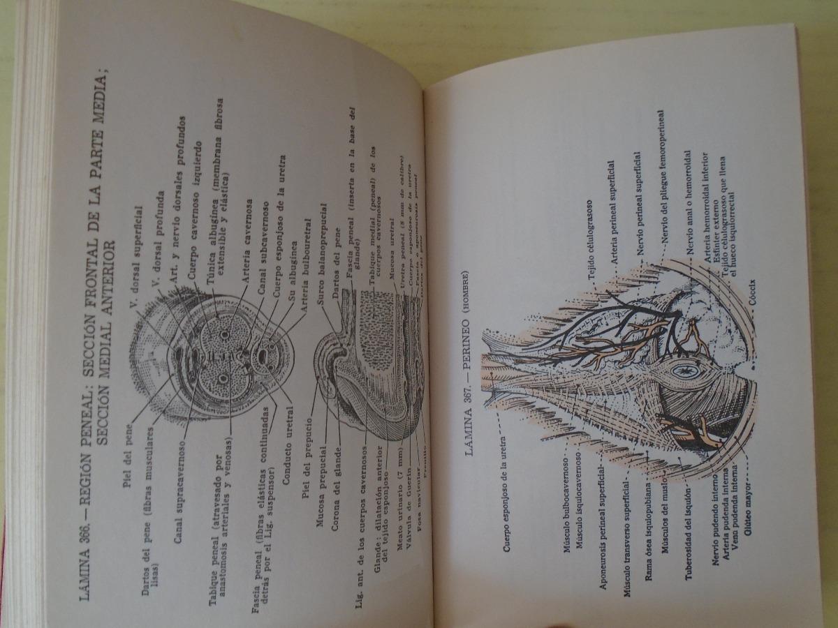 Atlas De Anatomia Pauchet Dupret - $ 150,00 en Mercado Libre