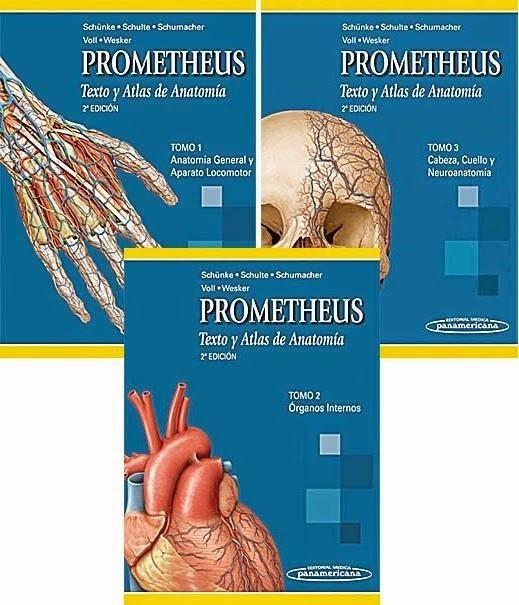 Atlas De Anatomia Prometheus Tres Tomos Alta Calidad Pdf - $ 3.550 ...