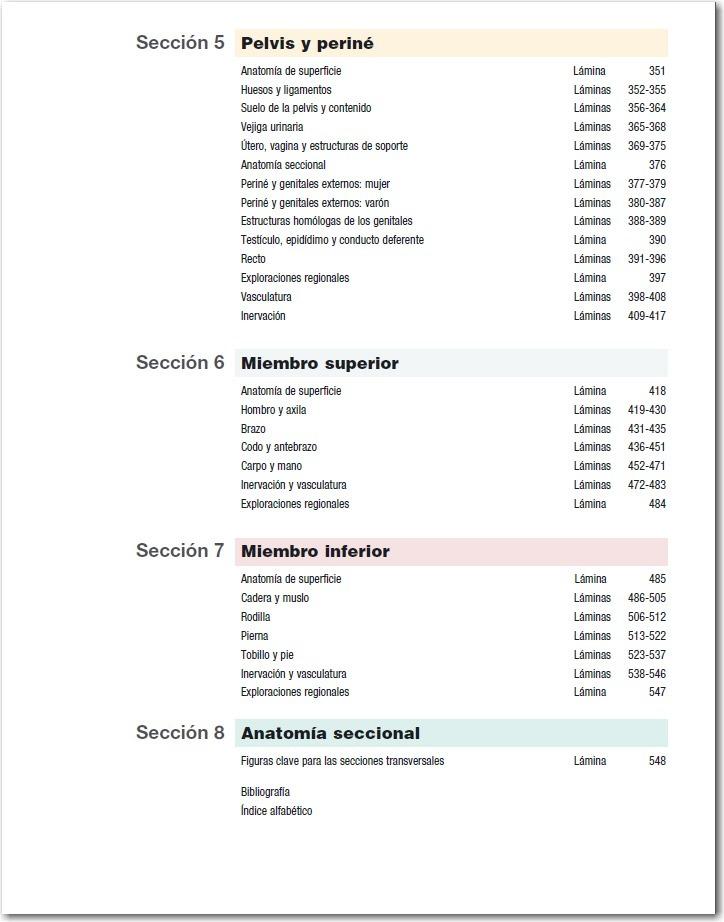 Dorable Agujeros Anatomía Y Fisiología 14ª Edición Pdf Descarga ...