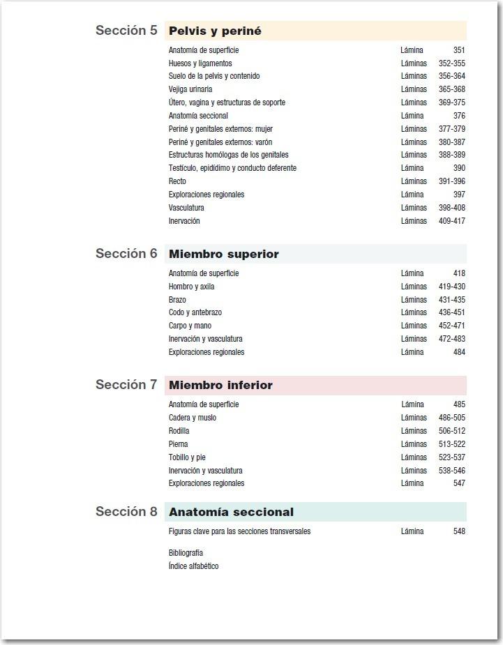 Moderno Anatomía De Superficie De Pelvis Fotos - Anatomía de Las ...
