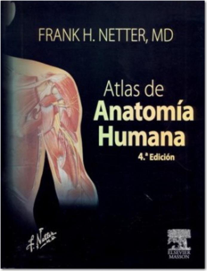 Famoso Atlas Rederos De La Anatomía Humana Friso - Anatomía de Las ...