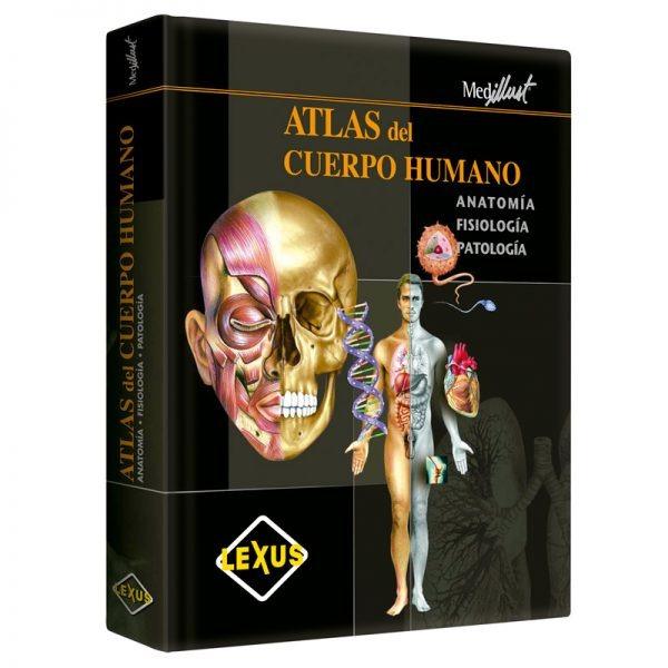 Fantástico Agujeros De La Anatomía Humana Y Fisiología Edición 11 ...