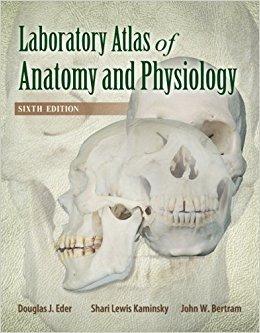 atlas laboratorio de anatomía y fisiología - ingles