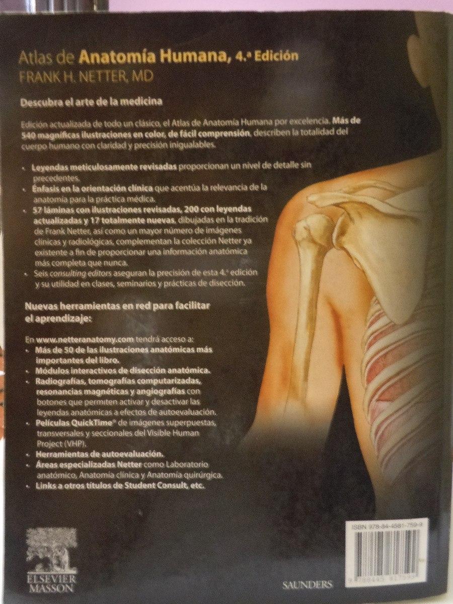 Encantador Atlas De Anatomía Humana Para El Artista Pdf Molde ...
