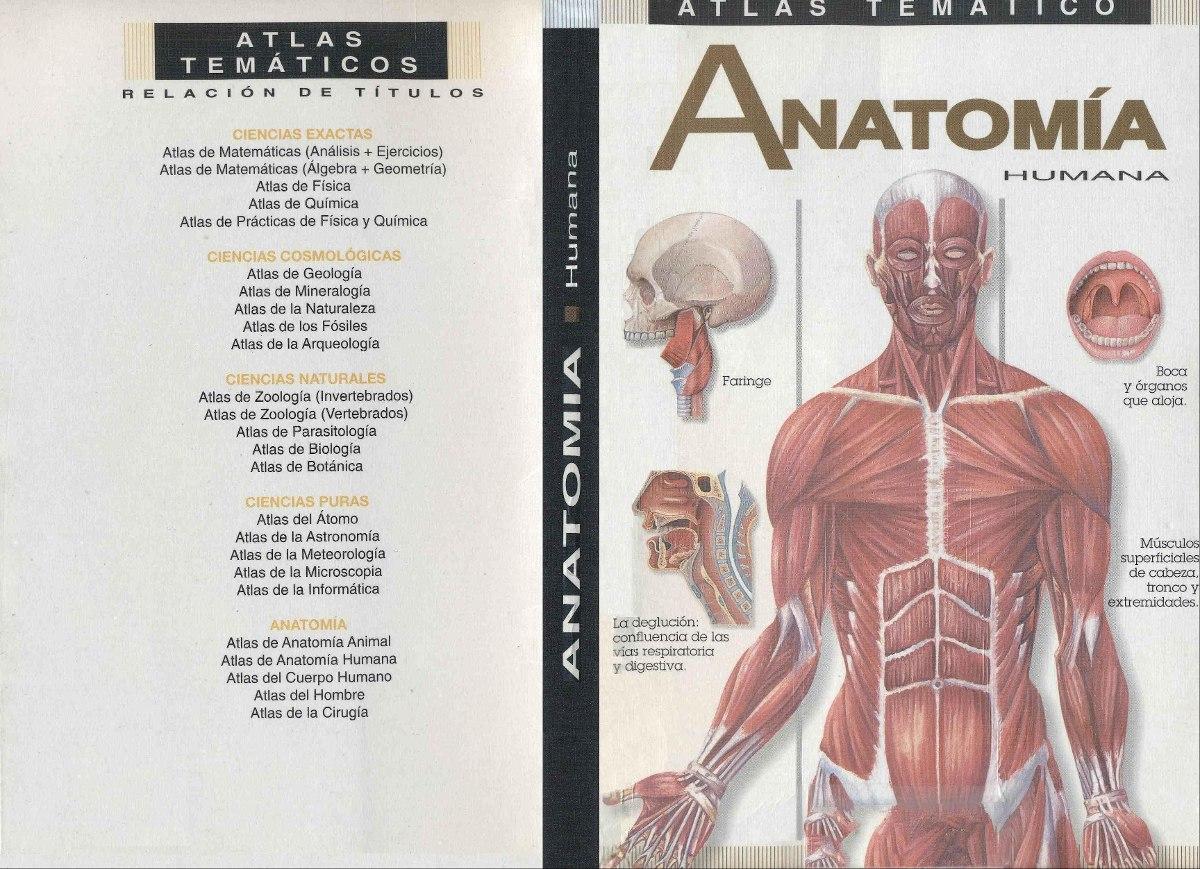 Ejercicios De Anatomía Humana - SoftwareMac