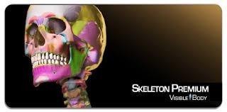 atlas  visible body 3d + skeletum 2 versão 3d