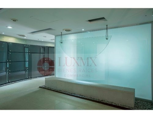 atractiva oficina con estilo feng shui