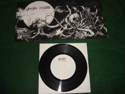audio kollaps & desolation - split ep