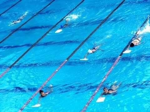 aulas de natação curso em 3 dvds a6qy