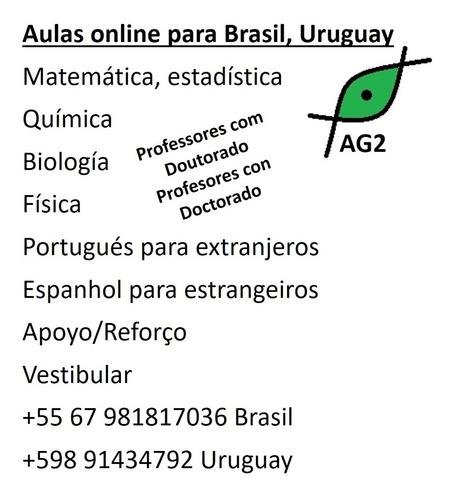 aulas particulares online