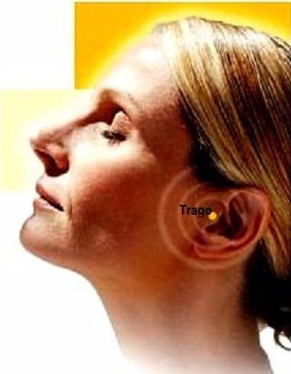 auriculoterapia adelgazante imanes acupresores baño oro