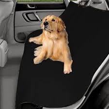auto mascotas para