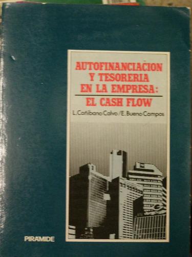autofinanciación y tesoreria en la empresa calvo campos
