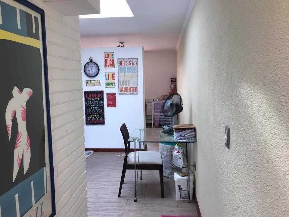 av la plaza / francisco de asis