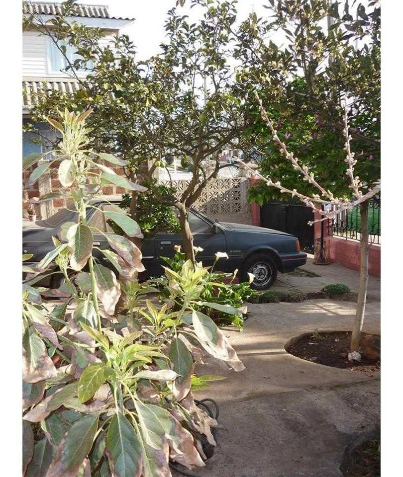 avenida antofagasta-gomez carreño