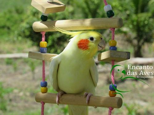 aves brinquedos brinquedos aves