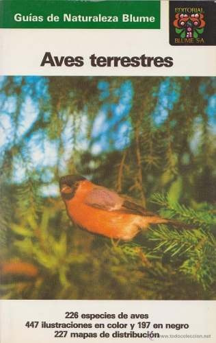 aves terrestres