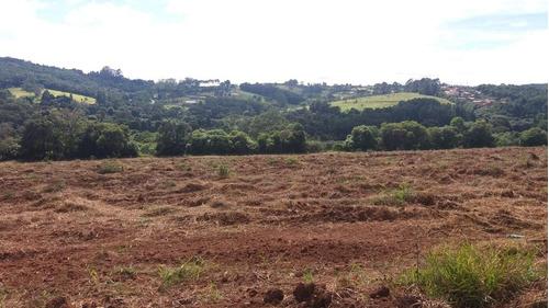 b otimo terrenos 20x50 já demarcados prontos para construir