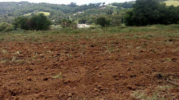 b terreno 1.000 m2 em ibiuna, c/ portaria 300 mts do asfalto