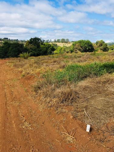 b terrenos de 1000 m² plainos, já cascalhados e ruas abertas
