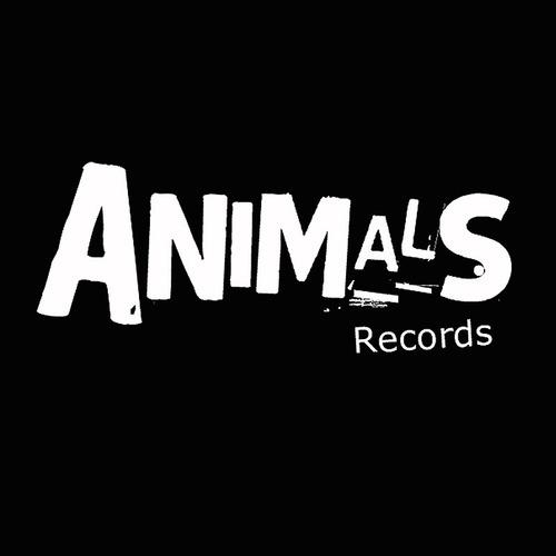 backstreet boys dna cd import nuevo original en stock
