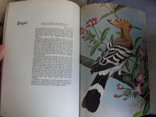 bail ede's birds 70 plates text by robet douglas tapa dura