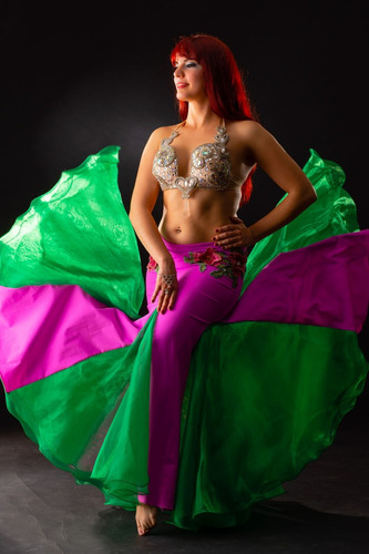 bailarina odalisca, show de danza arabe
