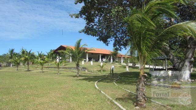 baixou preço!!! lindo sítio com 3 casas e piscina no cumbuco, área total de 78.307m² - ch0001