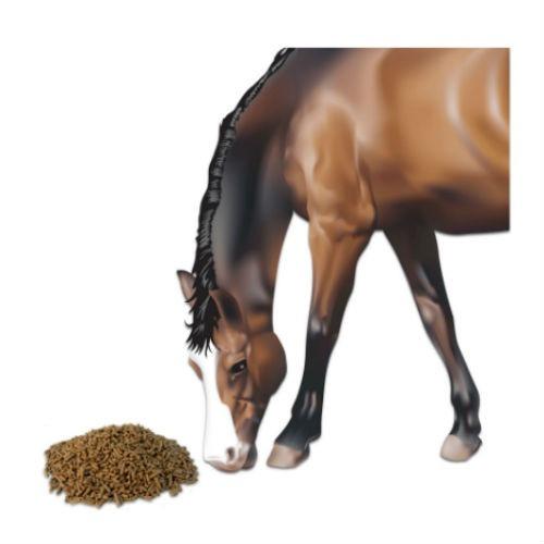 balanceado caballo derby nutrición animal 40 kg