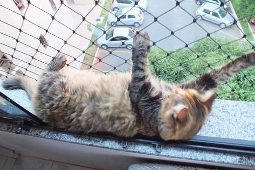 balcones, para seguridad redes para