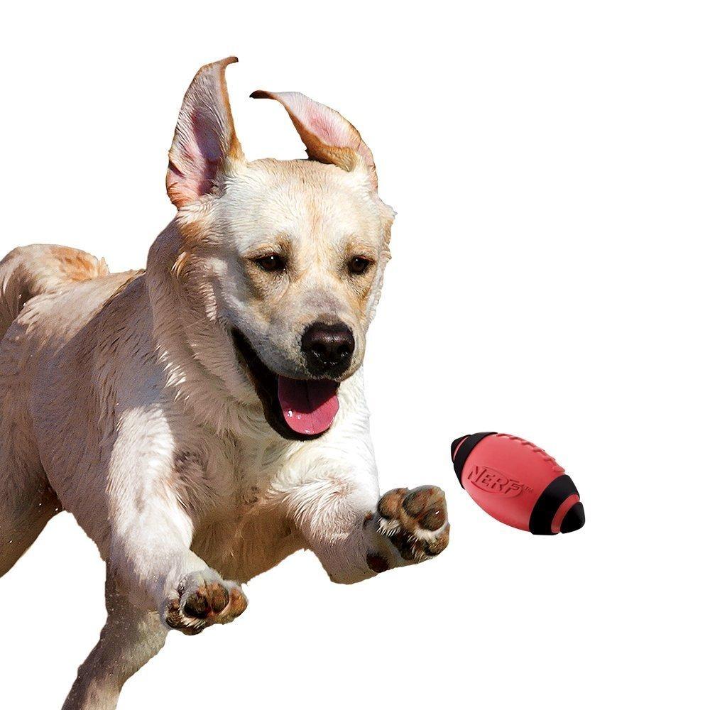 Balón De Fútbol Americano Nerf Juguete Para Perro 5 -   680.00 en ... 3061499f622ff