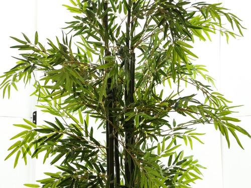 bambú de lujo 6 varas en macetero green outlet envío gratis
