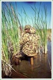 banco de cazador para pantano game winner