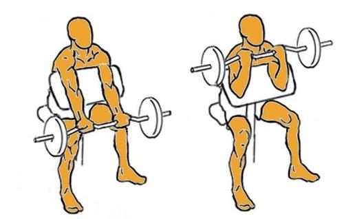 banco de pesas multiposicion sport fitness ref 071114