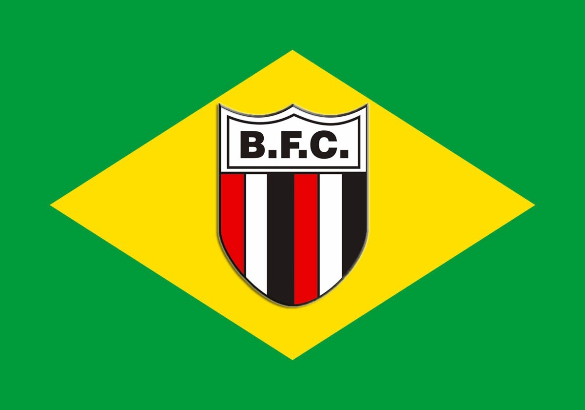 33de1ef350114 bandeira do botafogo - são paulo + bandeira do brasil. Carregando zoom.