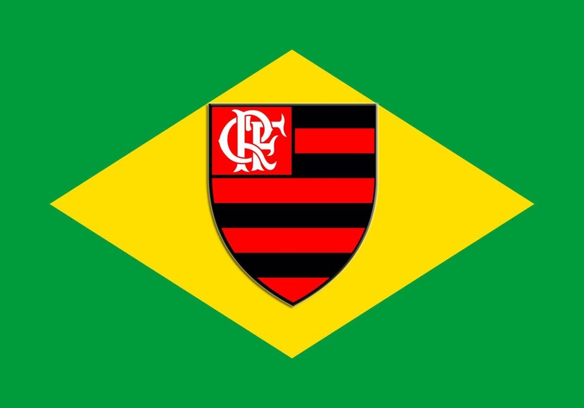 Image result for Flamengo Brasil
