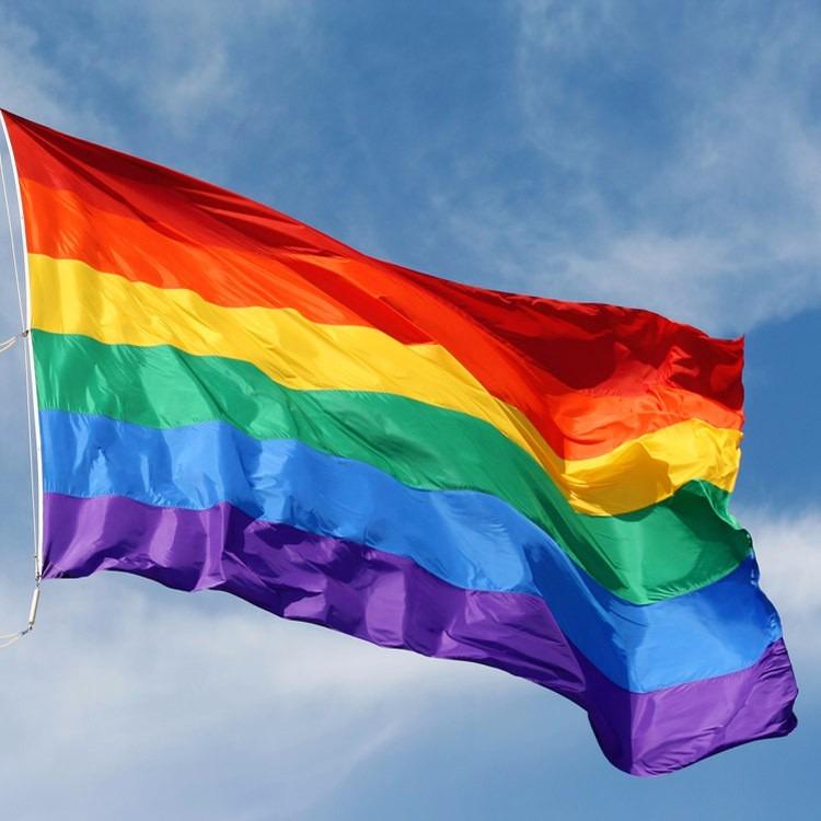 Bandeira Do Orgulho Gay Lgbt Lésbica 150x90cm = Frete