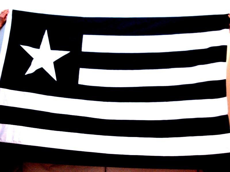 Bandeira Oficial Botafogo - 2 Metros - R  100 06bd725cadfe8