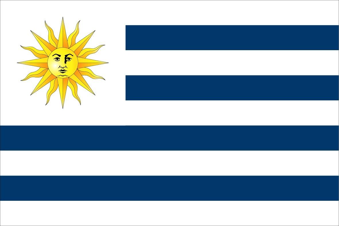 Bandeira Oficial Do Uruguai Tam Nq Np Brasil Suas Formas