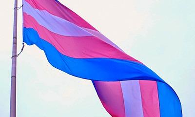 Resultado de imagem para bandeira trans